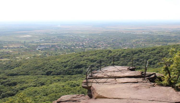 Zsongorko