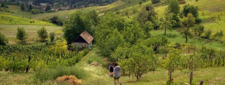 Baranyai-dombság