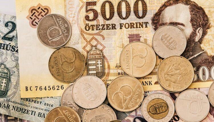 Támogatás Gazdaság Pécs 2