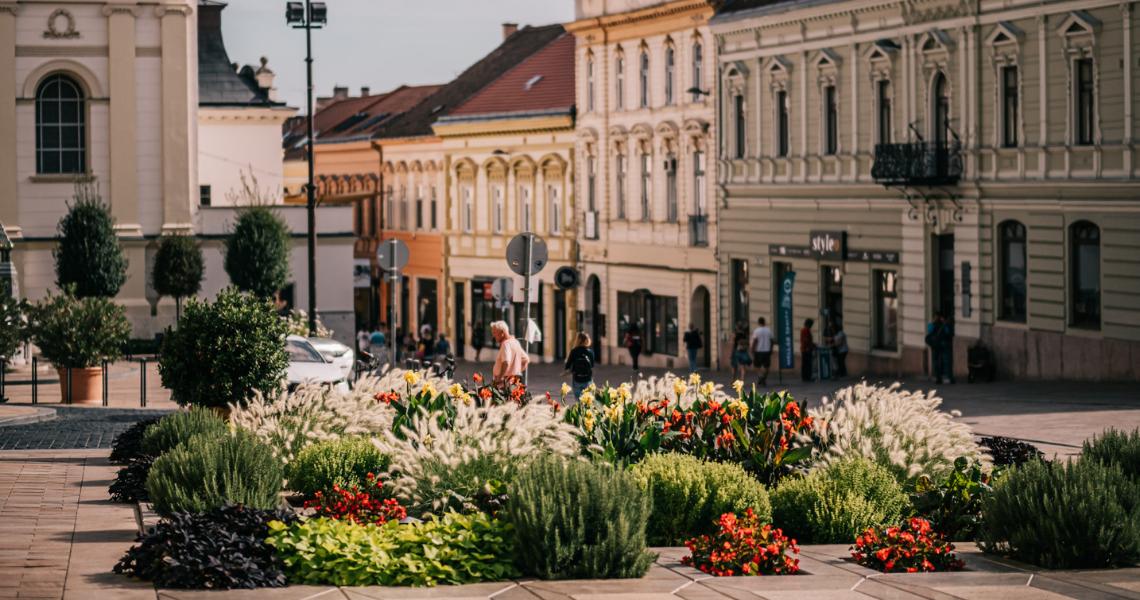 Az egyik legvirágosabb város Pécs
